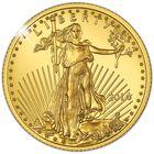 The American Eagle Precious Metal Collection PGS 3