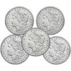 five decade set of san francisco mint morgan dollars SMD a Main