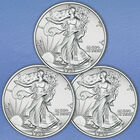 The Uncirculated Walking Liberty Silver Half Dollar Collection WHU 1